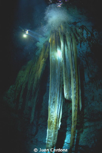 Moster House Chac Mool cenote ( bigest stalactite in the ... by Juan Cardona 